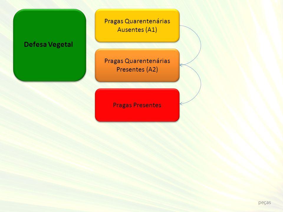Defesa Vegetal Pragas Quarentenárias Ausentes (A1) Pragas Quarentenárias Presentes (A2) Pragas Presentes peças