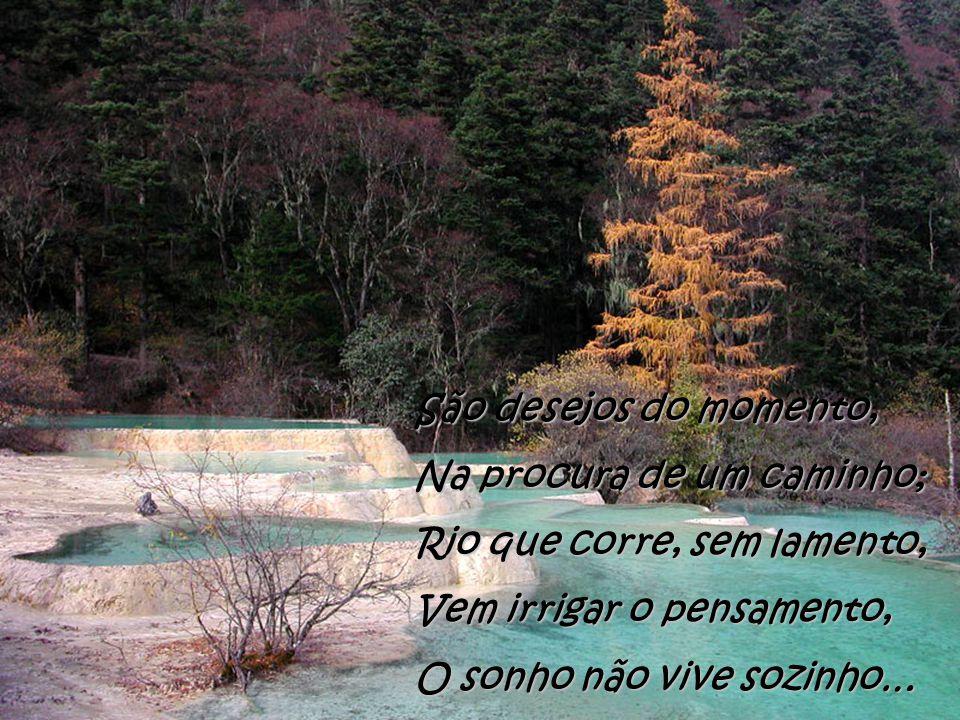 O poema liberta verdade, Neste canto de poetas : Estreita laços de amizade, Tem um tempo, sem idade, Que planeia novas metas…