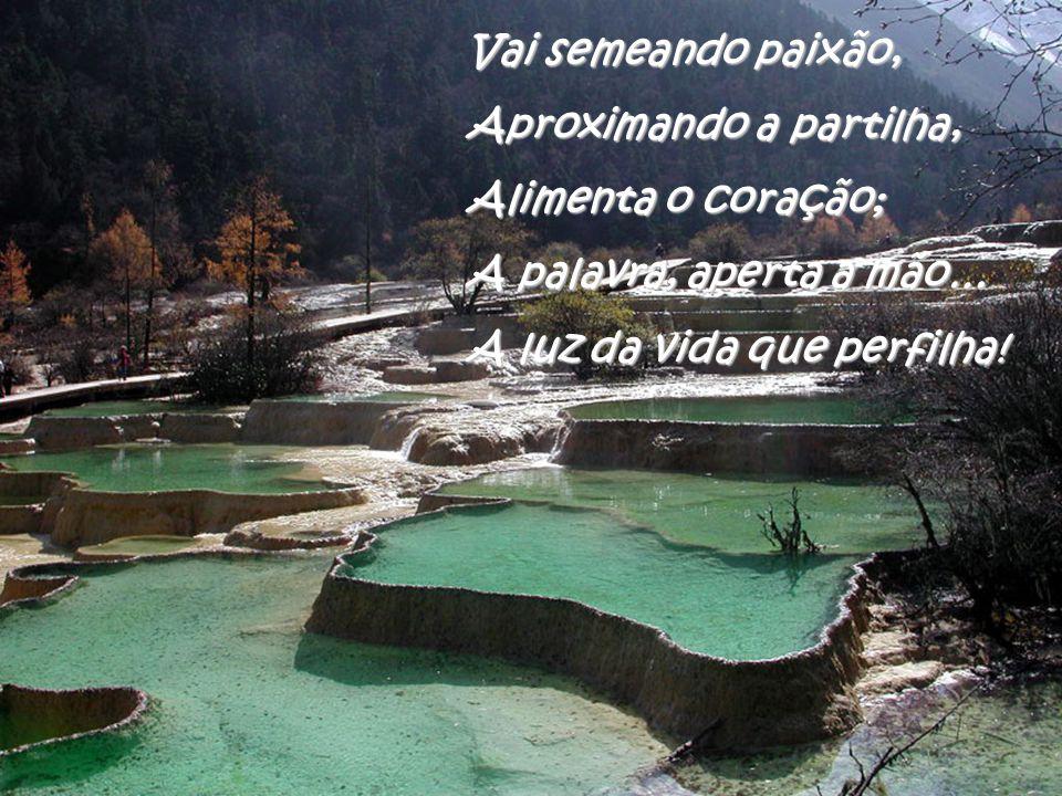 São desejos do momento, Na procura de um caminho; Rio que corre, sem lamento, Vem irrigar o pensamento, O sonho não vive sozinho…