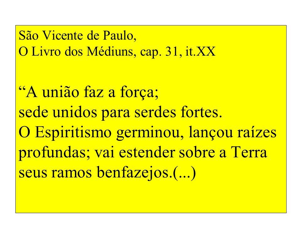 São Vicente de Paulo, O Livro dos Médiuns, cap. 31, it.XX A união faz a força; sede unidos para serdes fortes. O Espiritismo germinou, lançou raízes p