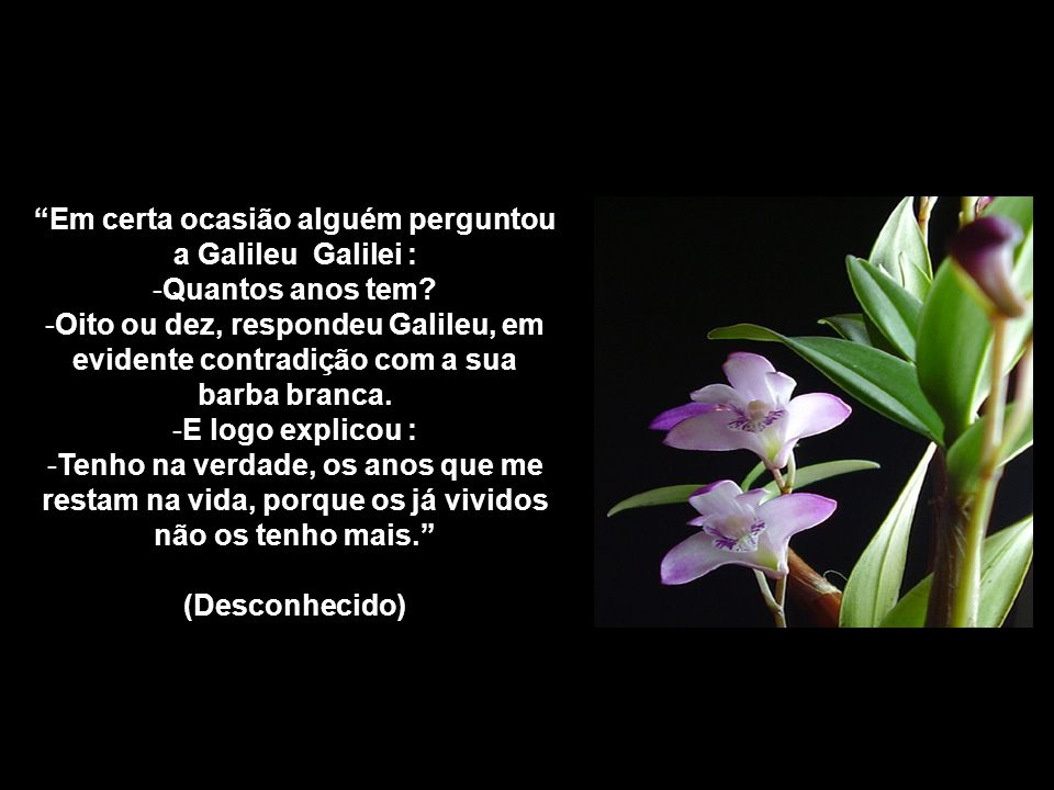 Como a abelha que colhe o mel de diversas flores, a pessoa sábia aceita a essência das diversas escrituras e vê somente o bem em todas as religiões. M