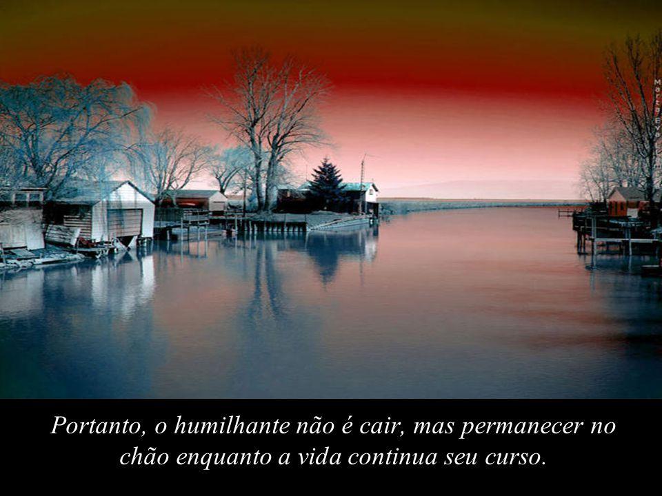 Portanto, o humilhante não é cair, mas permanecer no chão enquanto a vida continua seu curso.