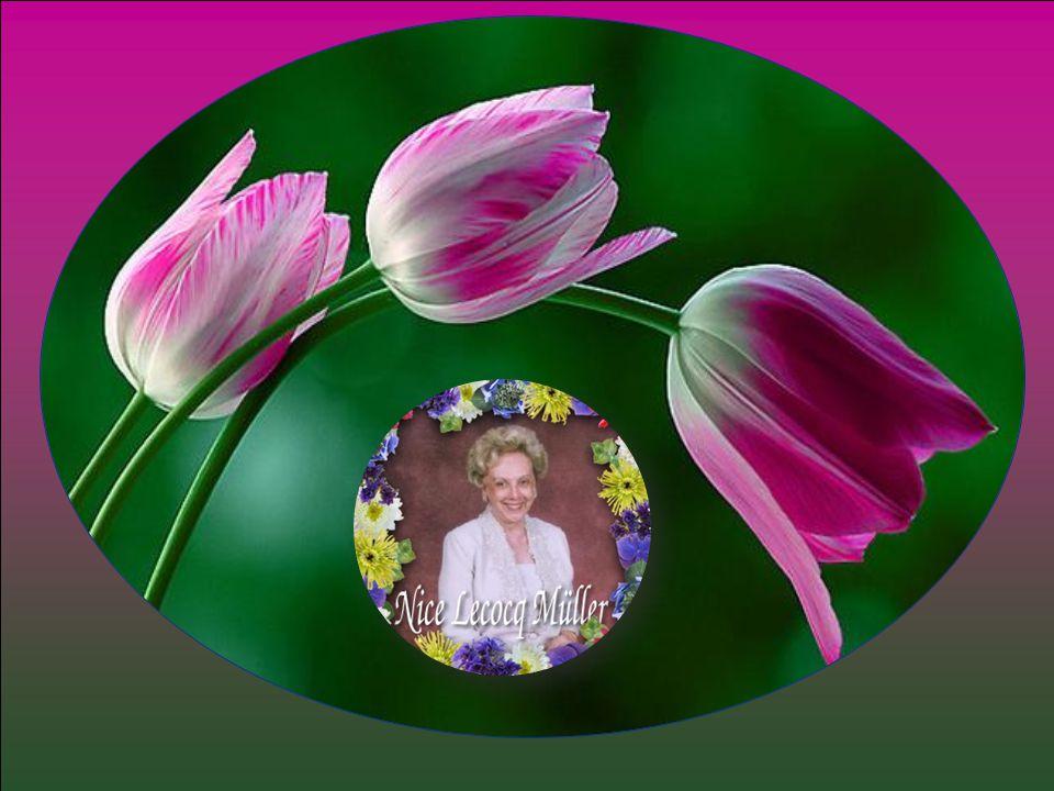 Mammy, Segue na Paz, Amor e Luz De Deus-Pai-Mãe. E, à cada degrau, ouça A canção dos Anjos que diz: Bem Vinda, Te Amamos! Amor eterno, De todos nós...