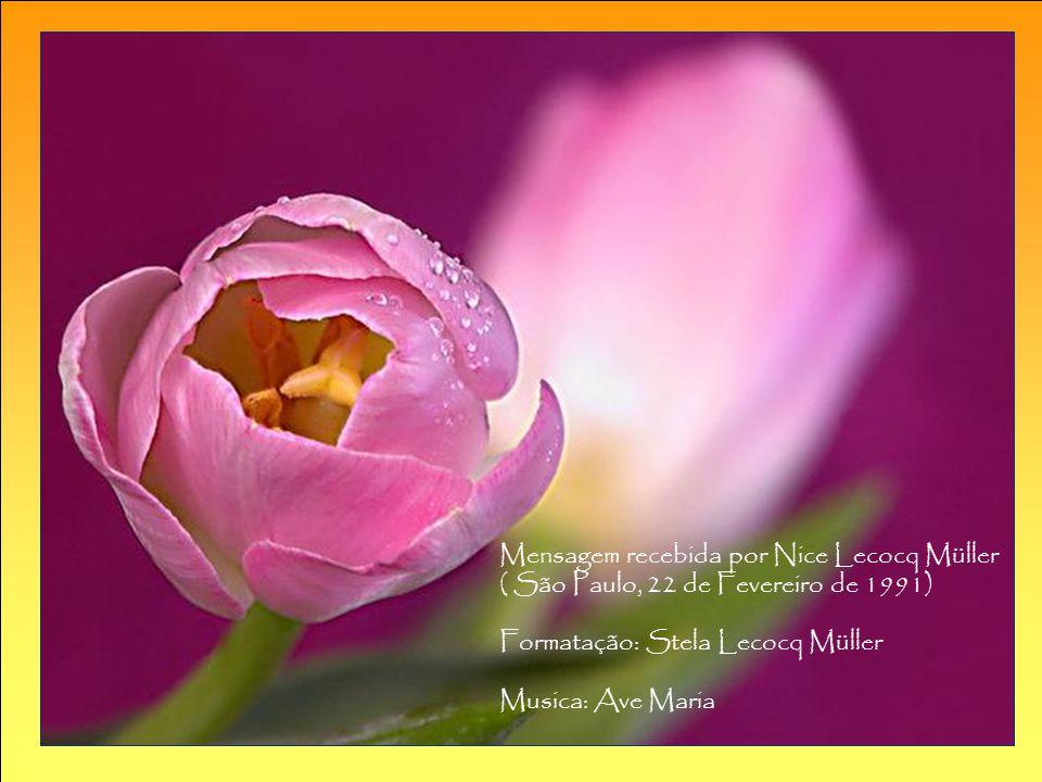 Que o Grande Criador te abençoe, Que as Luzes do Grande Astral te iluminem. Teu Anjo Guardião