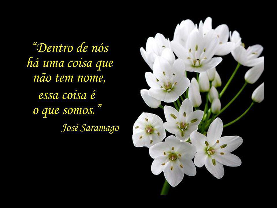 No dia 18 de junho, depois de uma noite serena e tranquila, Saramago falece na sua residência em Lanzarote, acompanhado de Pilar e de sua família, des