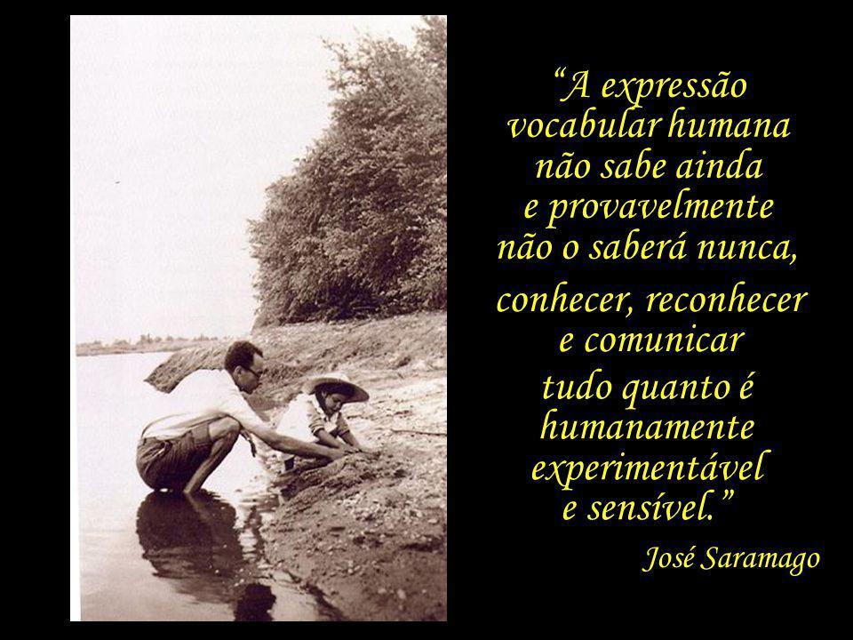 Muito universo, muito espaço sideral, mas o mundo é mesmo uma aldeia. José Saramago