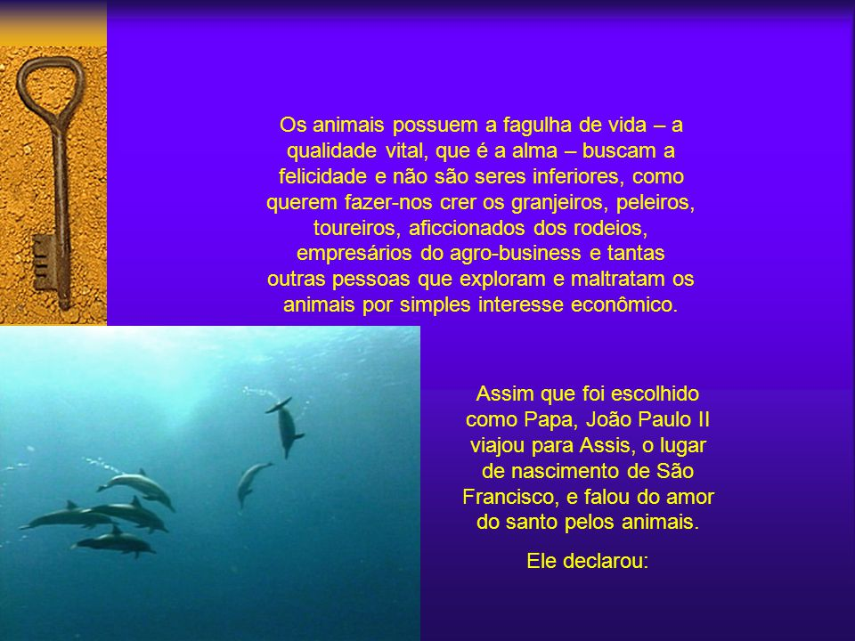 A compaixão pelos animais também foi tema proeminente no papado de João Paulo II. Ele proclamou que: os animais possuem uma alma e os homens devem ama