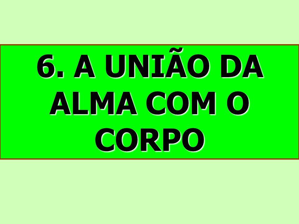 6. A UNIÃO DA ALMA COM O CORPO