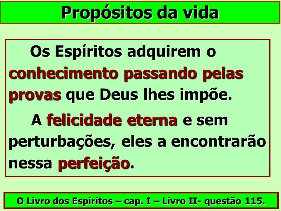 Propósitos da vida Os Espíritos adquirem o conhecimento passando pelas provas que Deus lhes impõe. Os Espíritos adquirem o conhecimento passando pelas