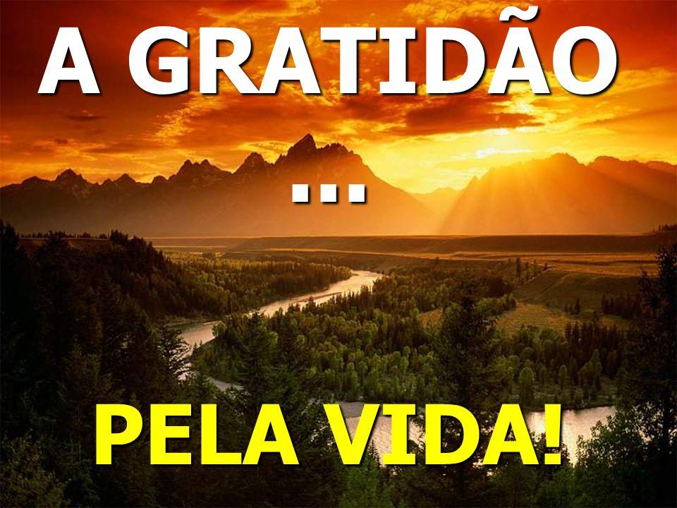 A GRATIDÃO... PELA VIDA!