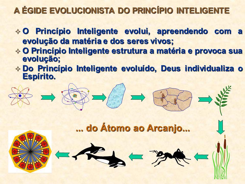 Por que o Espiritismo é uma Doutrina Ecológica.