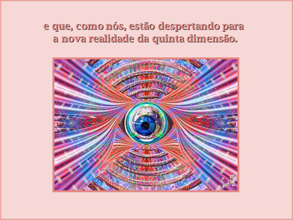 porque muitas vezes o velho mundo chama, o velho mundo grita, assusta e se não estivermos ancorados, retornamos à velha terceira dimensão como se estivéssemos despertando de um sonho bom...