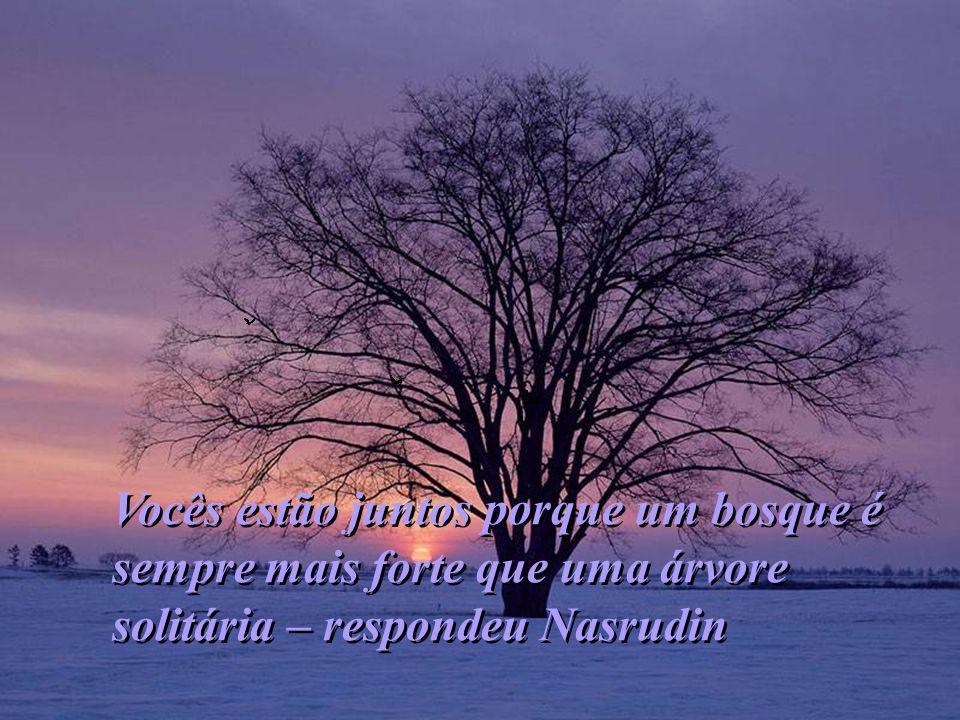 Vocês estão juntos porque um bosque é sempre mais forte que uma árvore solitária – respondeu Nasrudin Vocês estão juntos porque um bosque é sempre mais forte que uma árvore solitária – respondeu Nasrudin