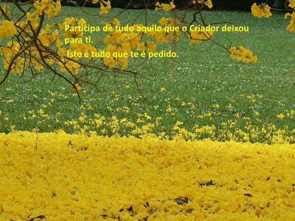 És tão perfeito quanto o nascer do sol sobre os campos floridos, tão precioso quanto o ar que respiras, quanto a quietude, a paz de Deus.