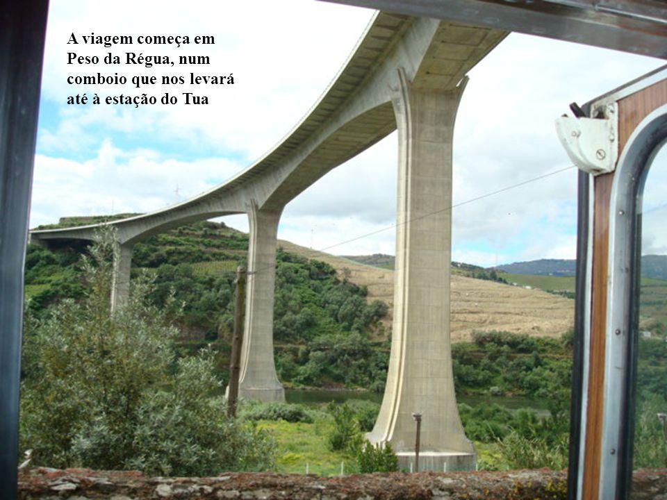 A viagem começa em Peso da Régua, num comboio que nos levará até à estação do Tua