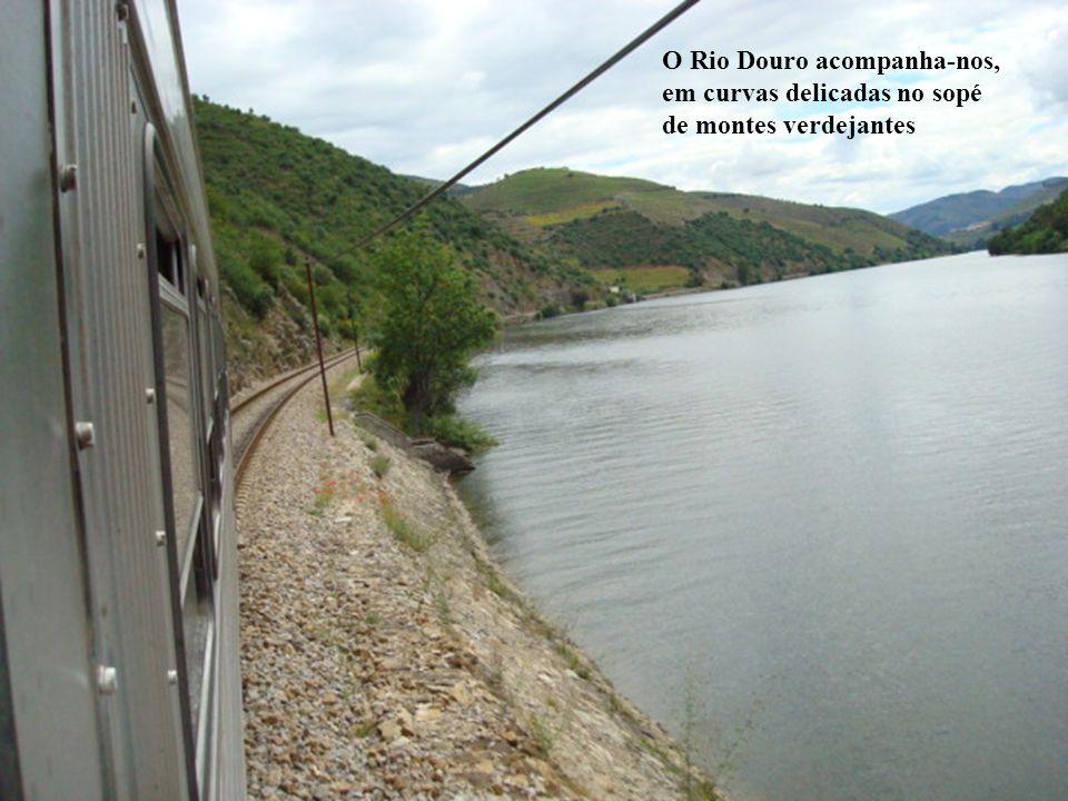 O Rio Douro acompanha-nos, em curvas delicadas no sopé de montes verdejantes