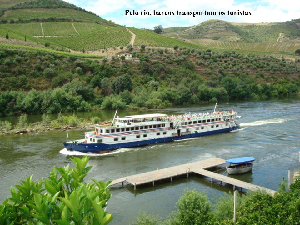 Pelo rio, barcos transportam os turistas