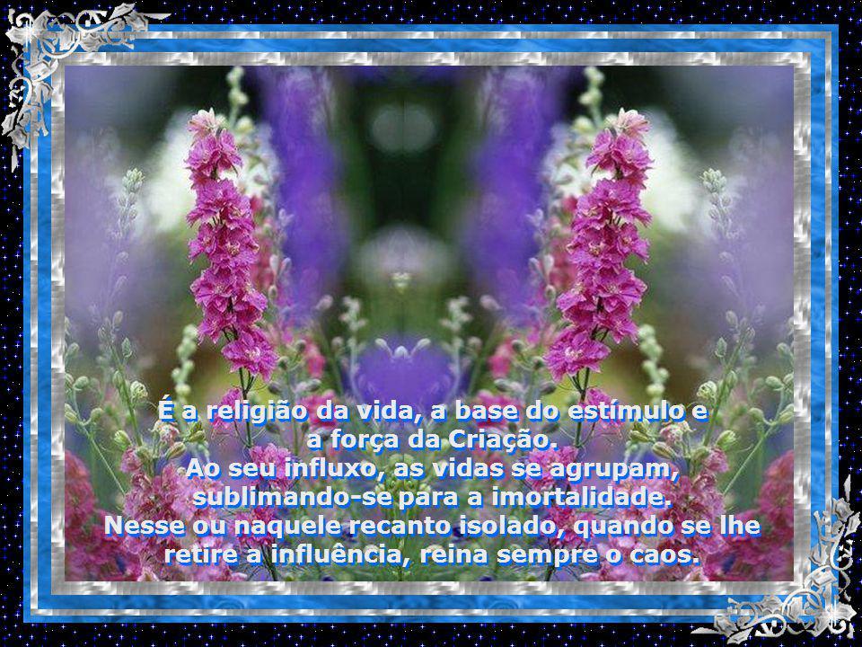 É a religião da vida, a base do estímulo e a força da Criação.