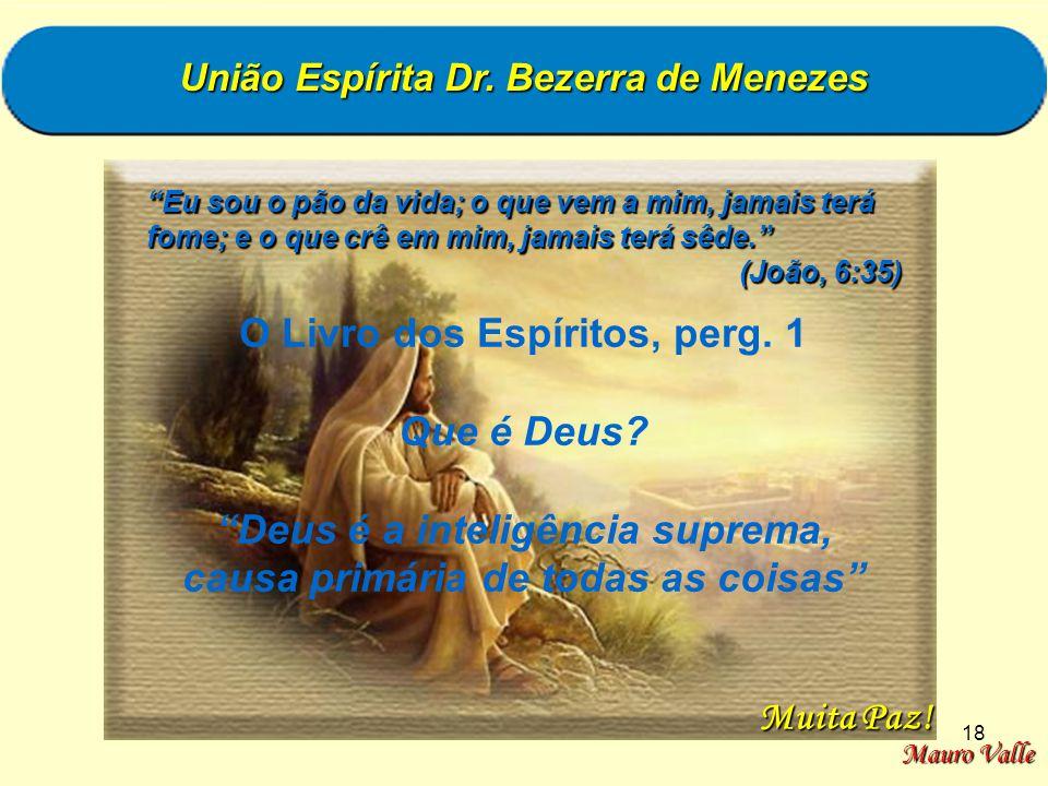18 União Espírita Dr. Bezerra de Menezes Eu sou o pão da vida; o que vem a mim, jamais terá fome; e o que crê em mim, jamais terá sêde. (João, 6:35) (