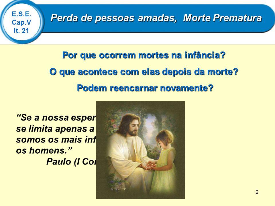 2 Se a nossa esperança em Cristo se limita apenas a esta vida, somos os mais infelizes de todos os homens. Paulo (I Coríntios, 15:19) E.S.E. Cap.V It.