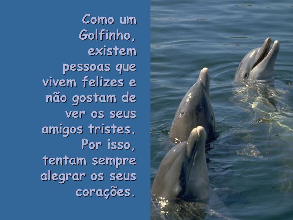 Como um Golfinho,existem pessoas que são puras e sinceras. Tais pessoas formam um laço de amizade amplo e eterno..
