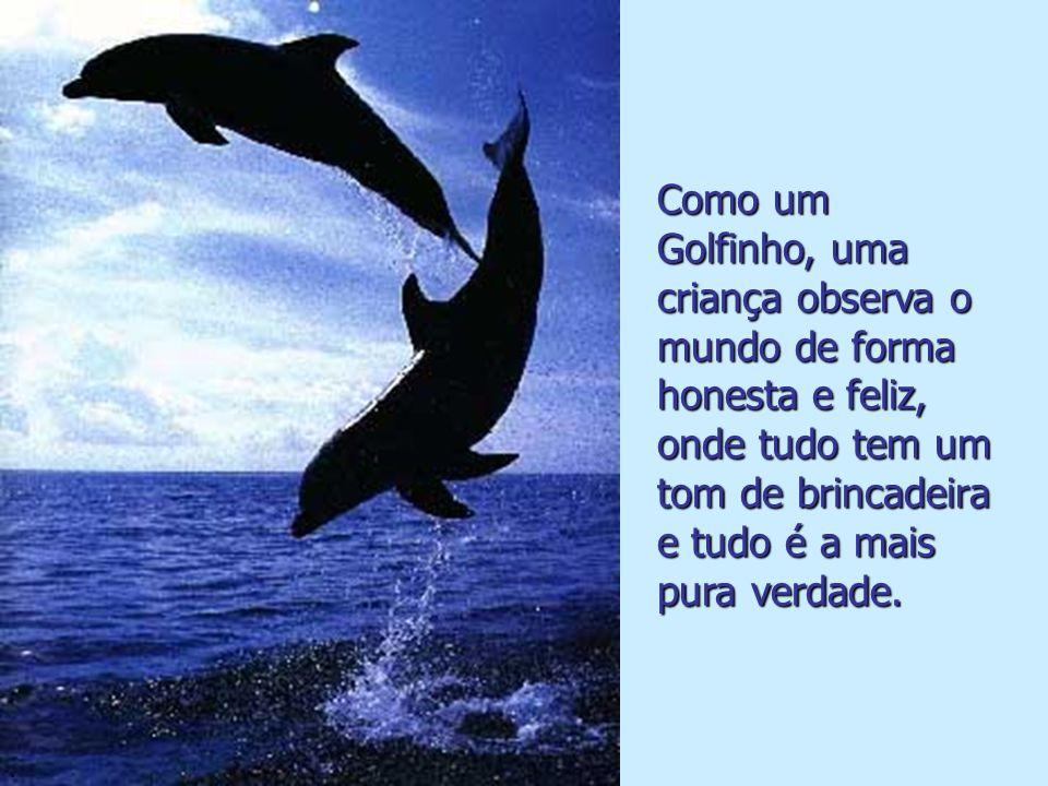 Como um Golfinho, as pessoas precisam de sorrir para que a sua vida seja cada vez melhor..