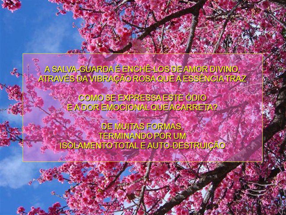 O AMOR - E TÃO SOMENTE O AMOR - É O EIXO SOBRE O QUAL TUDO GIRA ESTA ESSÊNCIA É PARA QUE COMPREENDAIS QUE DEVEIS ENCHER DE AMOR MESMO AQUELES QUE VIBR