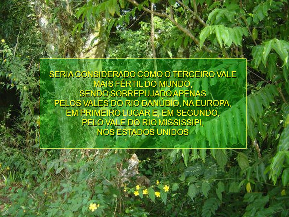 SEGUNDO O PROFESSOR GINO FERRI EM SEU LIVRO HISTÓRIA DO RIO TAQUARI-ANTAS, O VALE QUE O MARGEIA É REPUTADO DOS MAIS RICOS DO ESTADO, EM HÚMUS E FERTIL