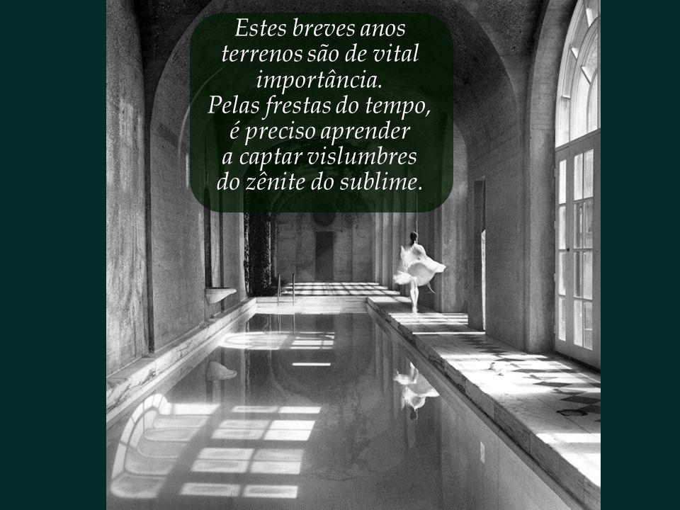 Quanta luz há nos saguões da nossa alma? Quanta poesia há nos salões do nosso coração?