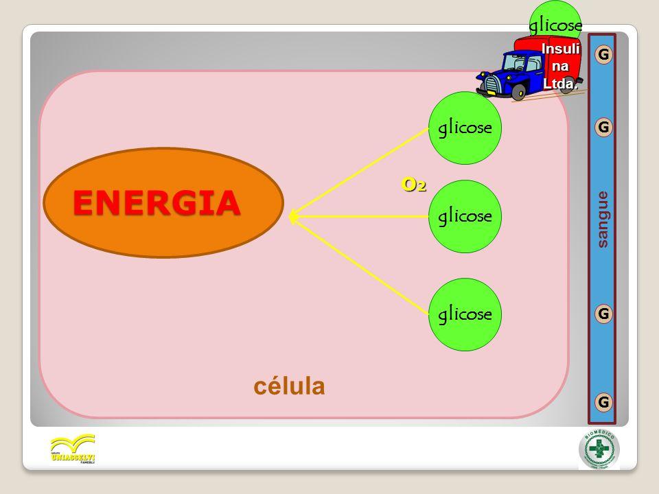 ENERGIA glicose O2O2O2O2 célula G G G G sangue glicose Insuli na Ltda.