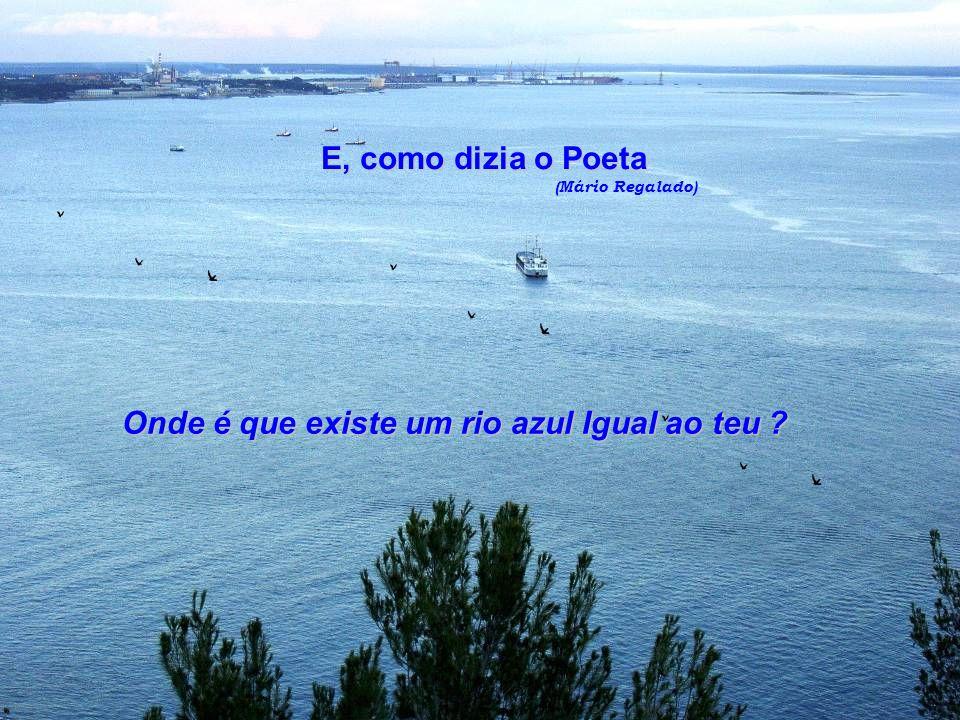 Quem me visita pode, enfim, confirmar aquilo que de ti dizem os teus filhos - que és uma das mais bonitas cidades de Portugal.