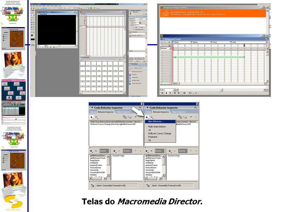 DSC/CEEI/UFCG Telas do Macromedia Director.