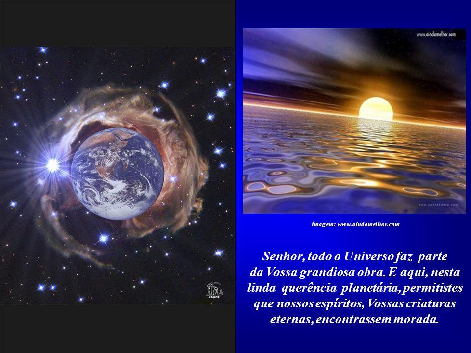 Obrigado, Senhor, por nos ter permitido a companhia de outras formas de vida, que se apresentam em milhões de espécies. Imagem: Fonte original não ide