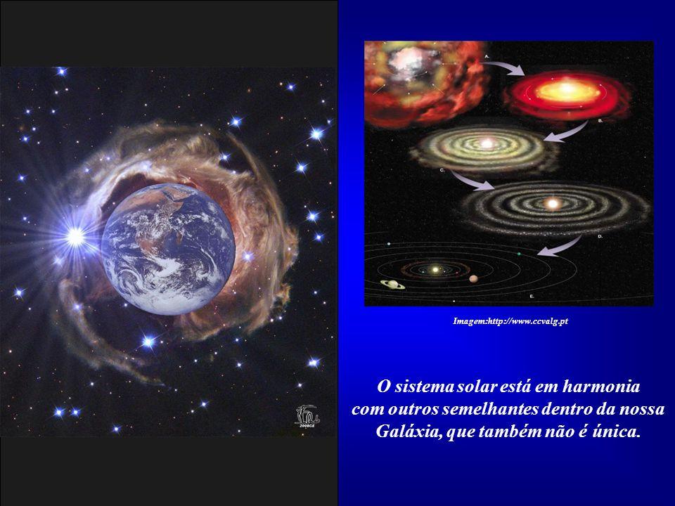 Há bilhões de anos a Vida se fixou aqui em formas tão surpreendentes, que evoluíram e se adaptaram às condições dos elementos organizados por Vós e ba