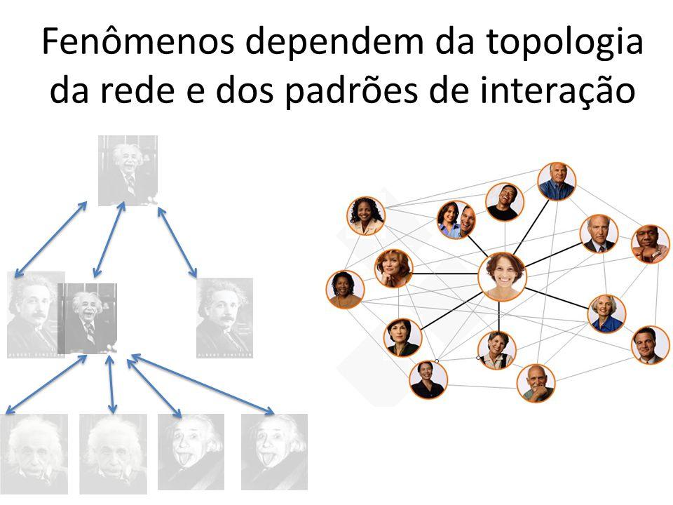Fenômenos dependem da topologia da rede e dos padrões de interação