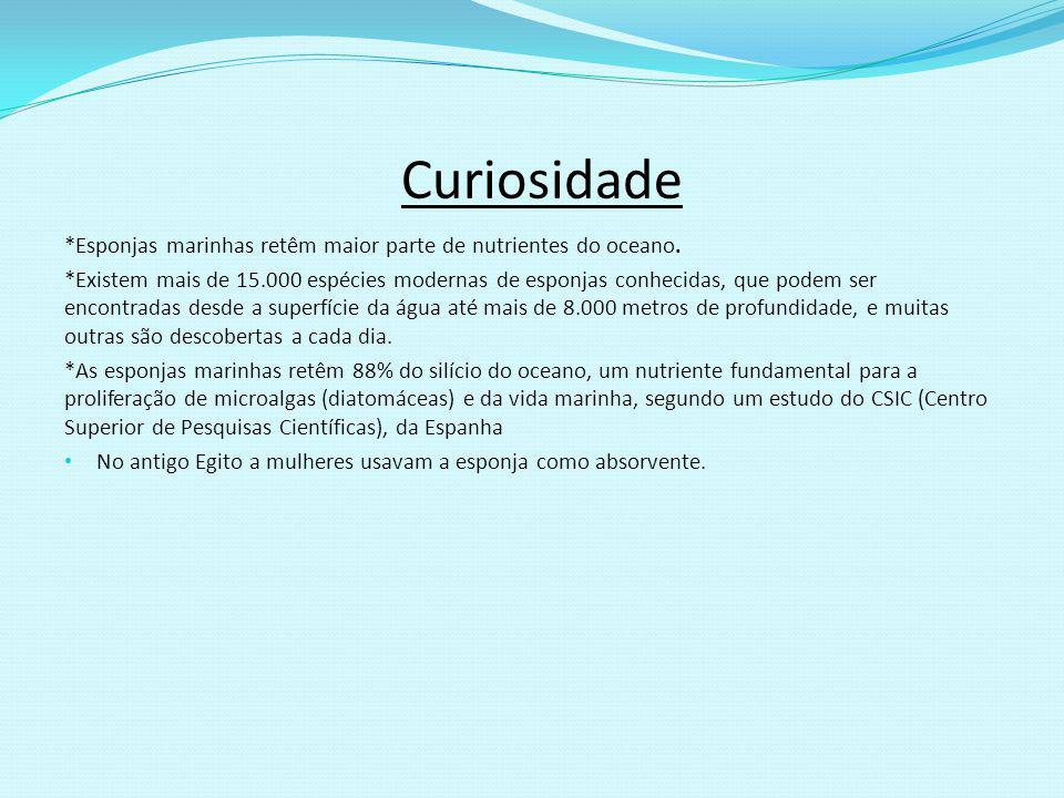 Fontes http://www.todabiol http://www1.folha.uol.com.br/ambiente/956831- esponjas-marinhas-retem-maior-parte-de-nutrientes- do-oceano.shtmlogia.com/zoologia/poriferos.htm http://www1.folha.uol.com.br/ambiente/956831- esponjas-marinhas-retem-maior-parte-de-nutrientes- do-oceano.shtmlogia.com/zoologia/poriferos.htm www.youtube.com/watch?v=rLRAZ1Mzqsg AGUILAR, João B.