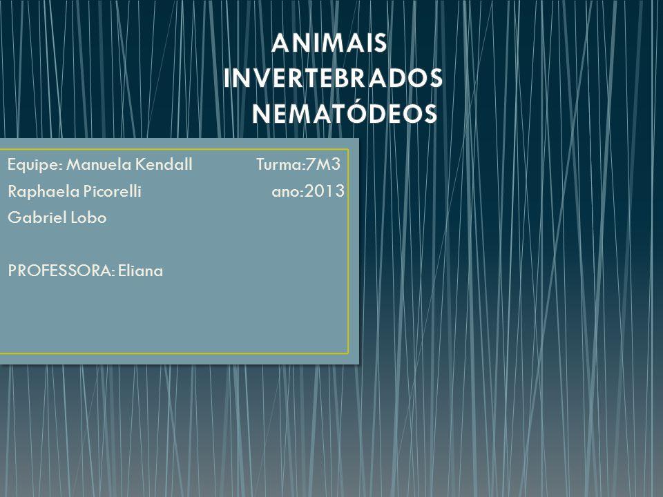 Os Nematódeos pertencem ao reino Animalia, que é composto por animais pluricelulares, eucariontes e heterótrofos.
