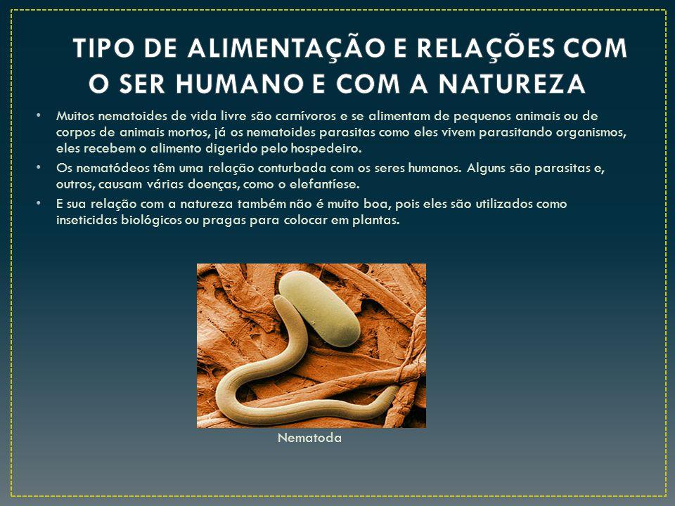 Muitos nematoides de vida livre são carnívoros e se alimentam de pequenos animais ou de corpos de animais mortos, já os nematoides parasitas como eles