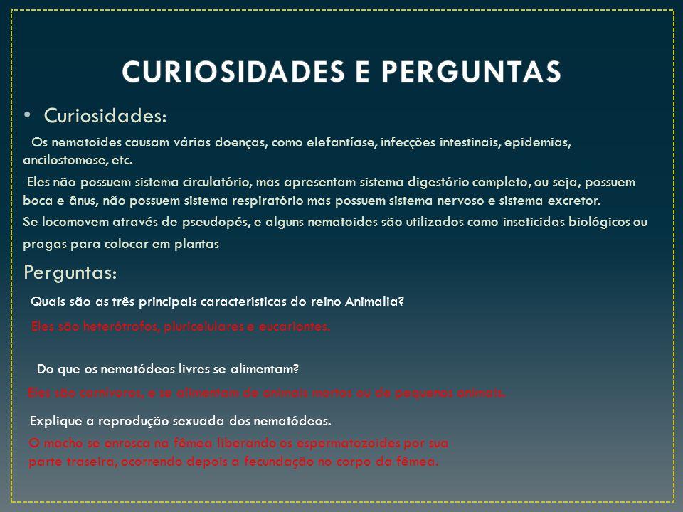 Curiosidades: Os nematoides causam várias doenças, como elefantíase, infecções intestinais, epidemias, ancilostomose, etc. Eles não possuem sistema ci