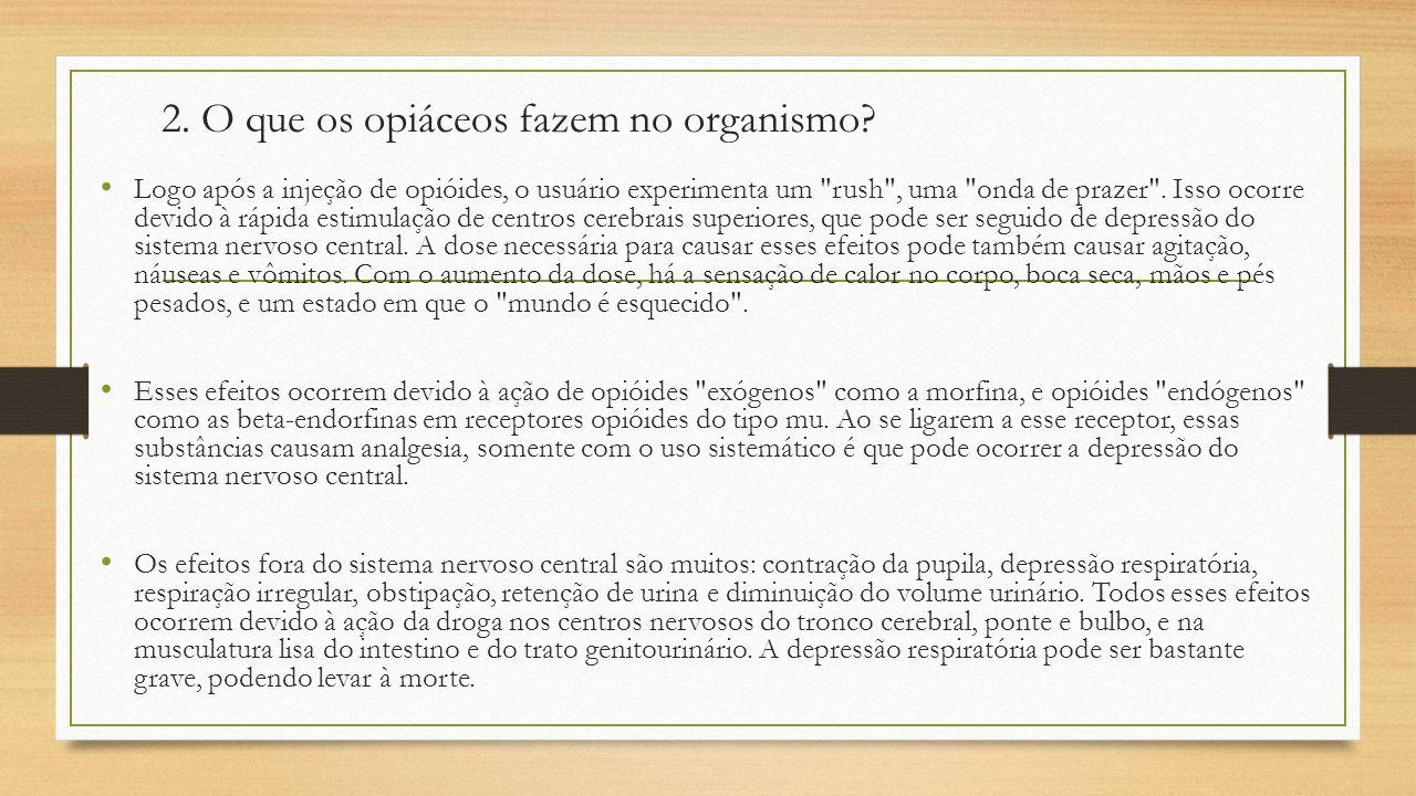 2. O que os opiáceos fazem no organismo? Logo após a injeção de opióides, o usuário experimenta um