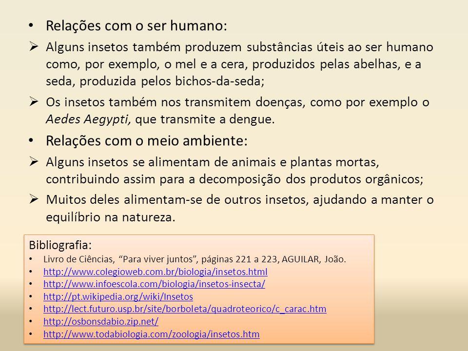Relações com o ser humano: Alguns insetos também produzem substâncias úteis ao ser humano como, por exemplo, o mel e a cera, produzidos pelas abelhas, e a seda, produzida pelos bichos-da-seda; Os insetos também nos transmitem doenças, como por exemplo o Aedes Aegypti, que transmite a dengue.