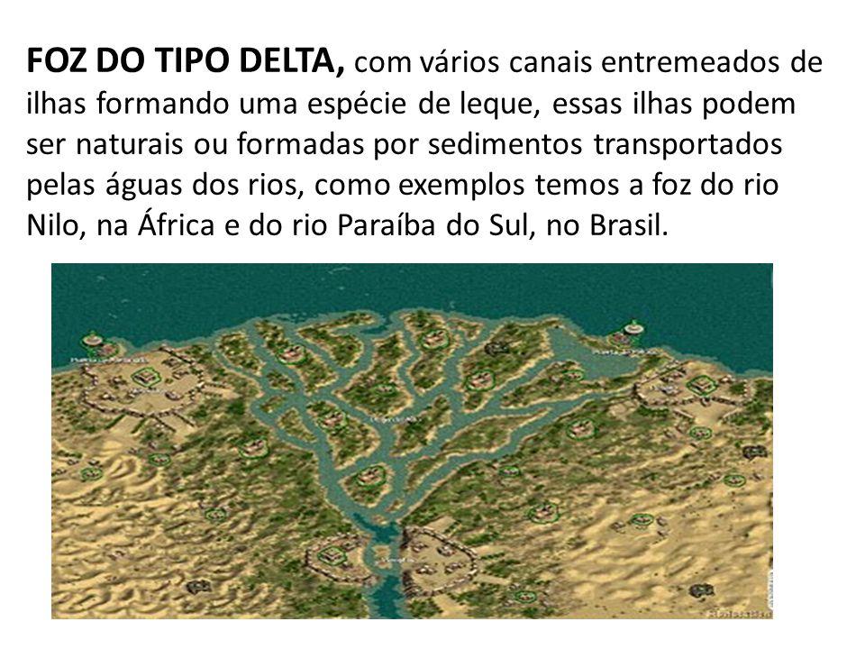 FOZ DO TIPO DELTA, com vários canais entremeados de ilhas formando uma espécie de leque, essas ilhas podem ser naturais ou formadas por sedimentos tra