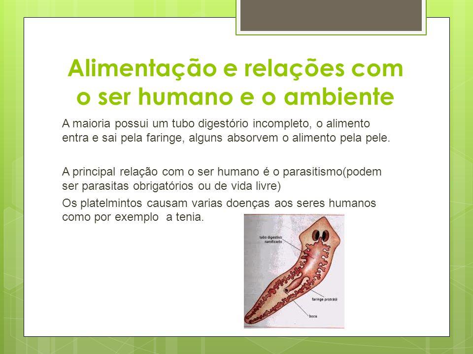 Alimentação e relações com o ser humano e o ambiente A maioria possui um tubo digestório incompleto, o alimento entra e sai pela faringe, alguns absor