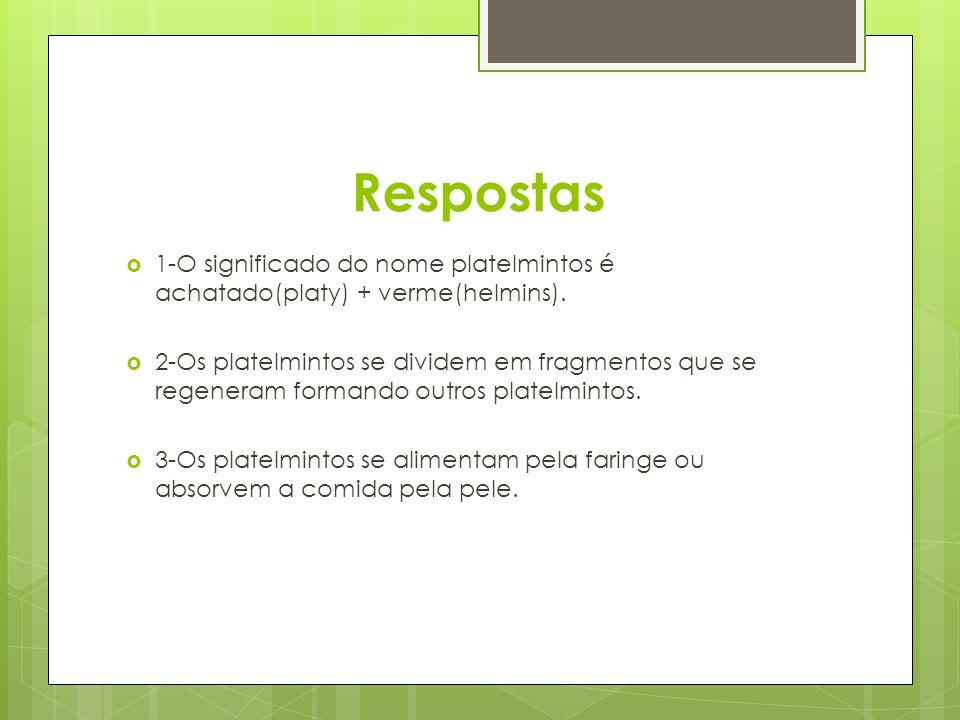 Respostas 1-O significado do nome platelmintos é achatado(platy) + verme(helmins). 2-Os platelmintos se dividem em fragmentos que se regeneram formand