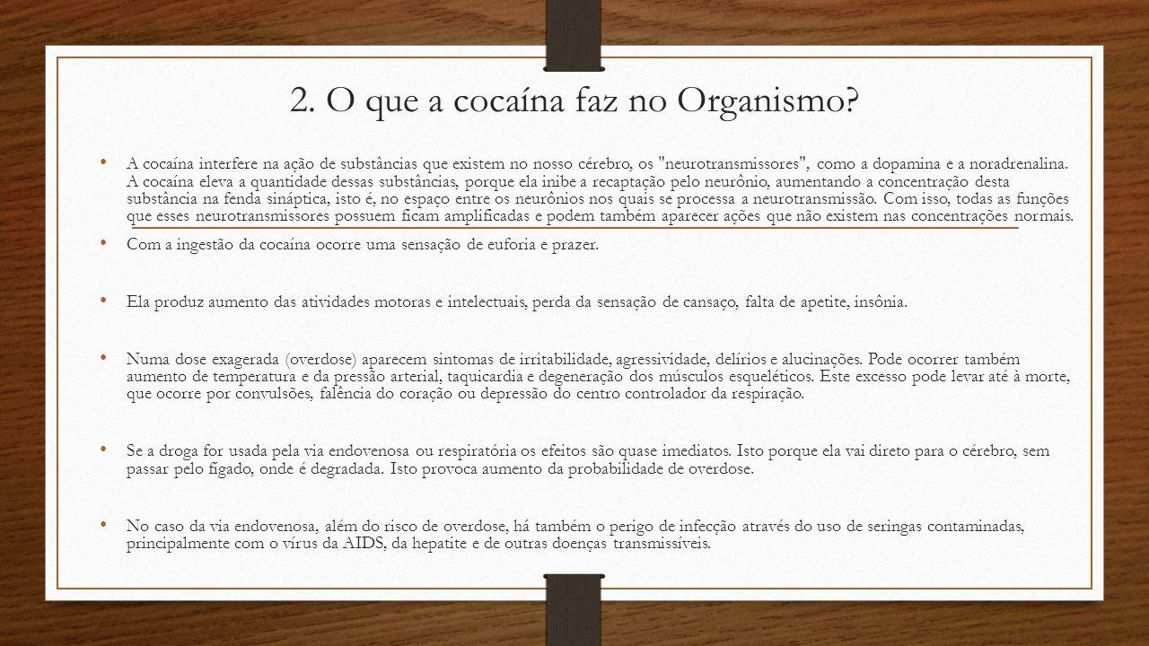 2.O que a cocaína faz no Organismo.