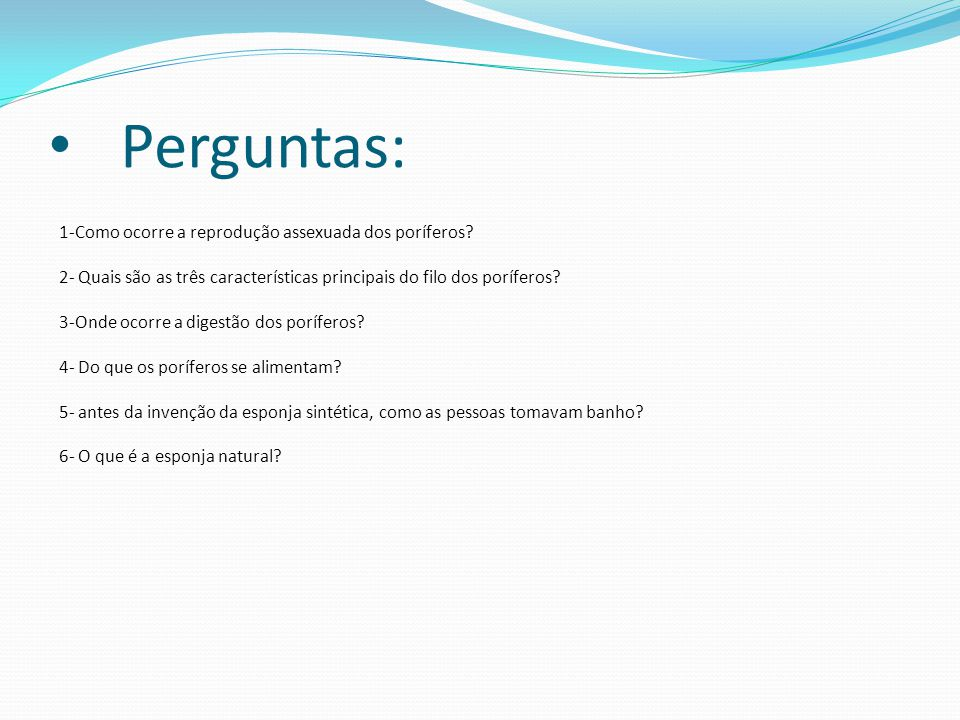 Perguntas: 1-Como ocorre a reprodução assexuada dos poríferos? 2- Quais são as três características principais do filo dos poríferos? 3-Onde ocorre a