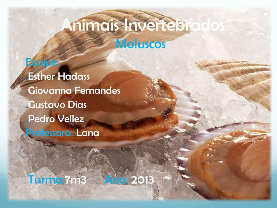 Animais Invertebrados Moluscos Equipe:.Esther Hadass.Giovanna Fernandes.Gustavo Dias.Pedro Vellez Professora: Lana Turma:7m3 Ano: 2013