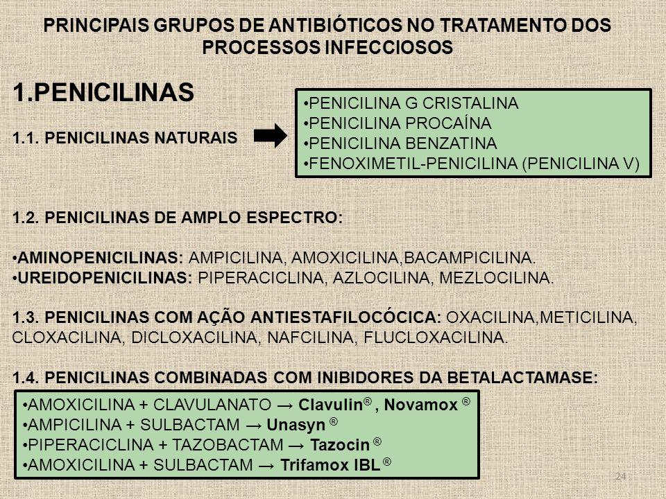 24 PRINCIPAIS GRUPOS DE ANTIBIÓTICOS NO TRATAMENTO DOS PROCESSOS INFECCIOSOS 1.PENICILINAS 1.1. PENICILINAS NATURAIS 1.2. PENICILINAS DE AMPLO ESPECTR
