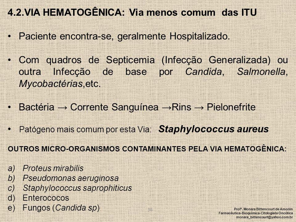 4.2.VIA HEMATOGÊNICA: Via menos comum das ITU Paciente encontra-se, geralmente Hospitalizado. Com quadros de Septicemia (Infecção Generalizada) ou out