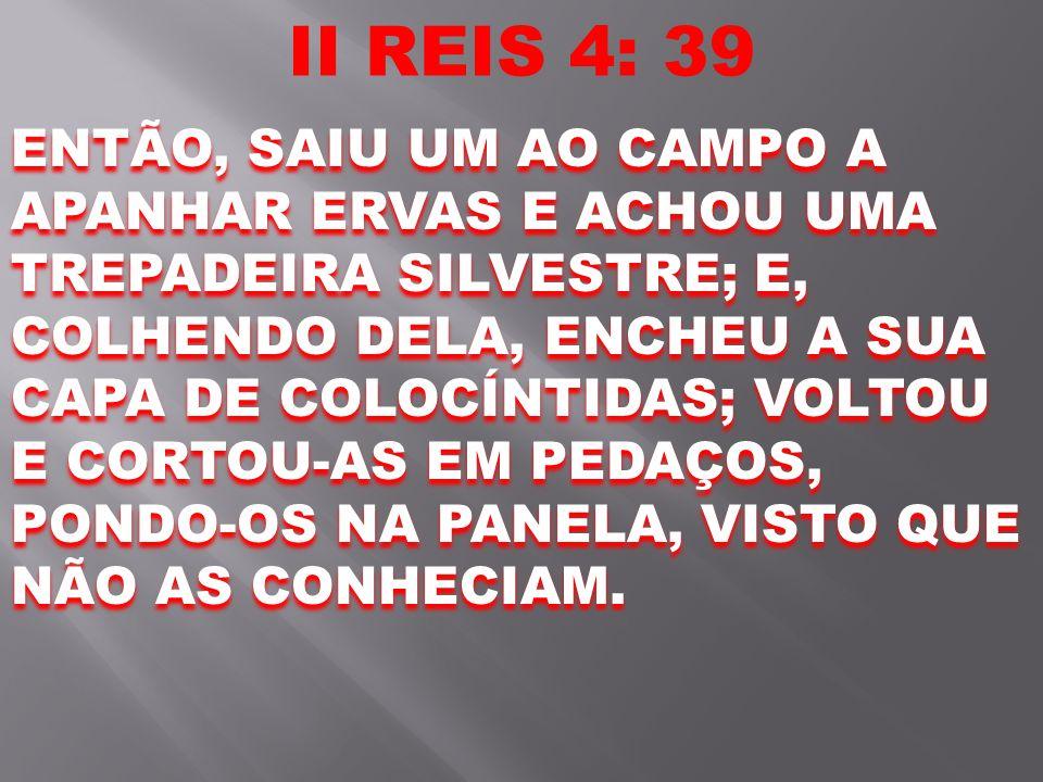 II REIS 4: 39 ENTÃO, SAIU UM AO CAMPO A APANHAR ERVAS E ACHOU UMA TREPADEIRA SILVESTRE; E, COLHENDO DELA, ENCHEU A SUA CAPA DE COLOCÍNTIDAS; VOLTOU E